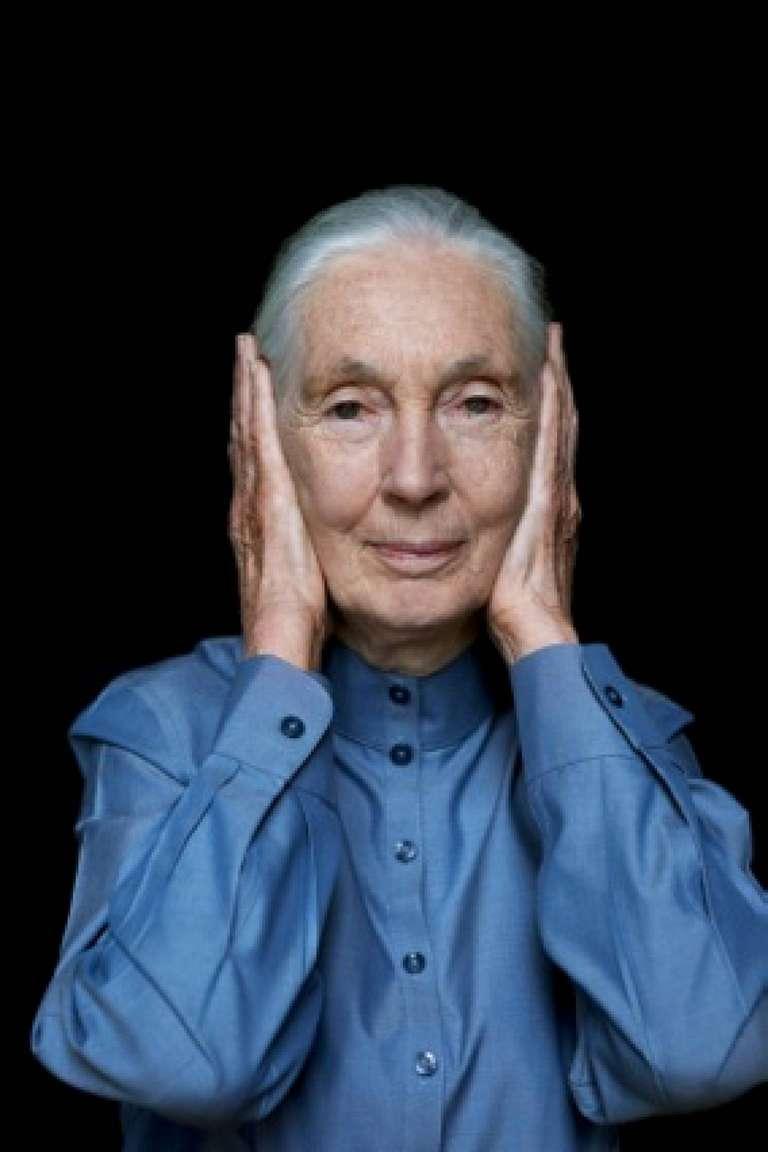 Jane Goodall III