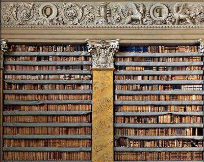 Biblioteca Paladina